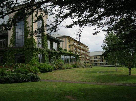 The Dunloe : Dunloe Hotel