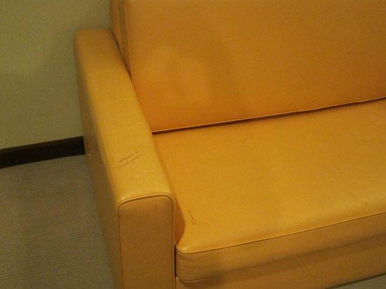 Silka Johor Bahru : Dirty sofa