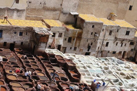 Artisanal Affairs Day Tours : View of the tannery