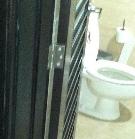 Bavaro Princess All Suites Resort, Spa & Casino: Cockroaches on bathroom door - 2nd Plantinum Room w/jacuzzi.