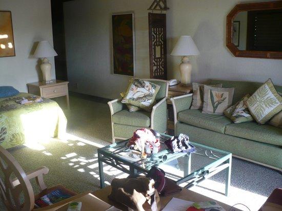 Garden Isle Cottages: Soggiorno con divano, tele e divano lett