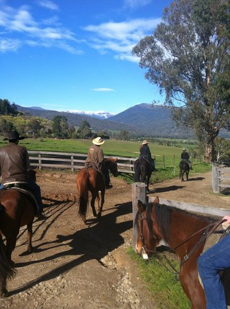 Bogong Horseback Adventures: the start of our adventure