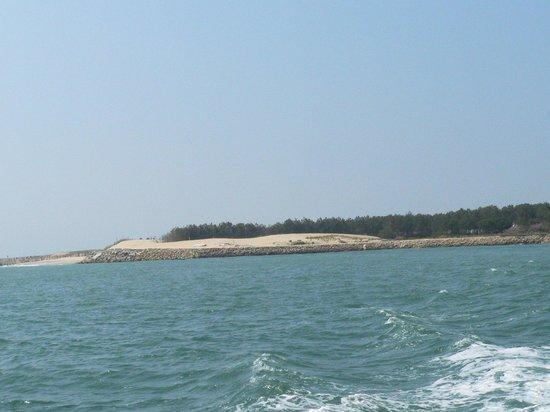 Les Pinasses du Bassin d'Arcachon  Tours : la dune du Pilat vue du bateau