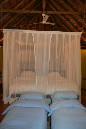 Jaci's Safari Lodge: chalet 2
