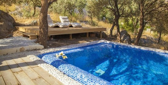 Oasis Hotel: delux suit's private pool