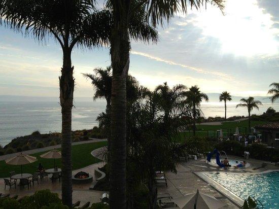 Dolphin Bay Resort & Spa: VUE DE LA TERRASSE DE NOTRE CHAMBRE