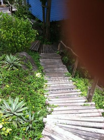 Koh Tao Hillside: part of the stairs (hill is even worse)