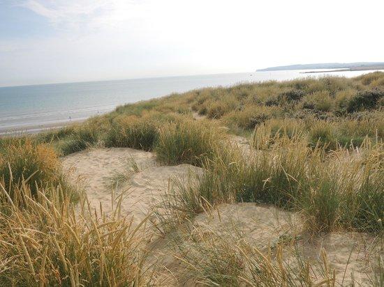 Point Farm B&B : Camber Sands
