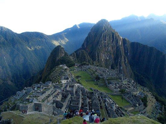 Tucanos Peru