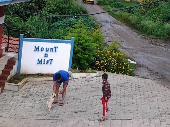 Mount 'n' Mist: Hotel & grounds