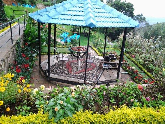 Mount 'n' Mist: Garden area