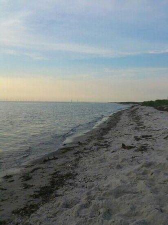 Skanor, Suède : skanör beach, almost touching öresund