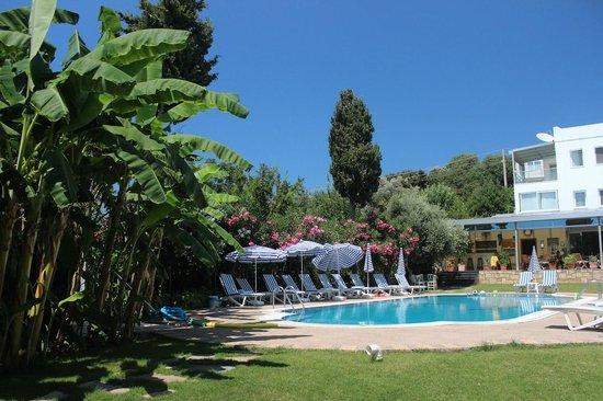 Sun Garden Apart Hotel : Pırıl Pırıl bir Havuz