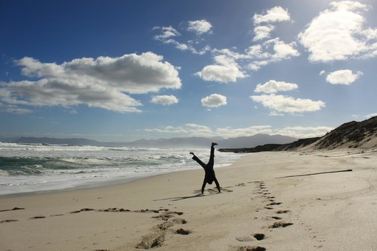 Grootbos Private Nature Reserve: De Kelders beach