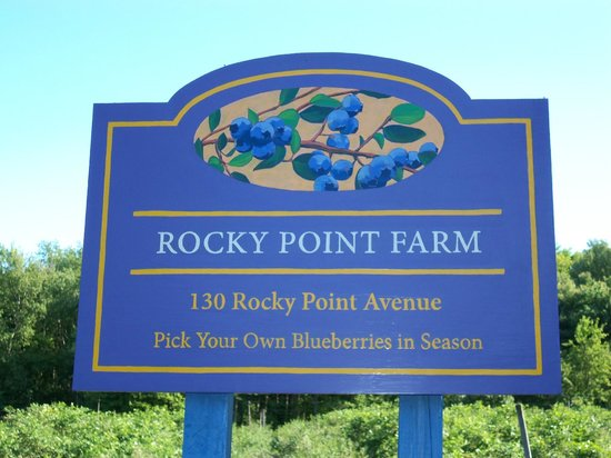 ‪Rocky Point Blueberry Farm‬