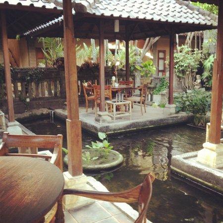هوتل بوري بامبو: au milieu du patio