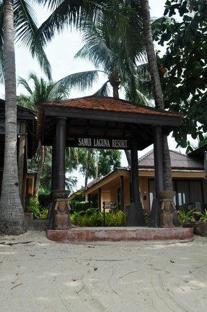 Samui Laguna Resort: Территория