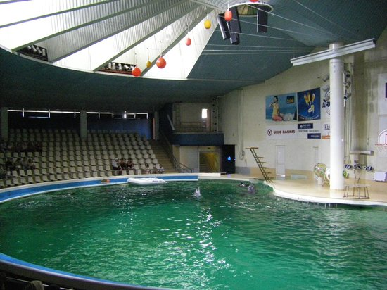 Deep blue - Foto di Lithuanian Sea Museum, Klaipeda - TripAdvisor