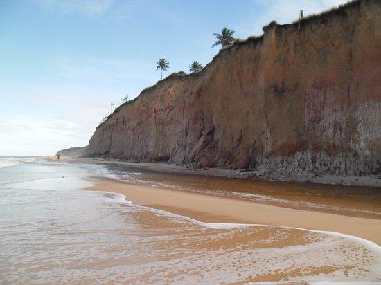 Japara Beach: praia japara