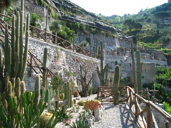 Hotel Botanico San Lazzaro: террасы ботанического сада