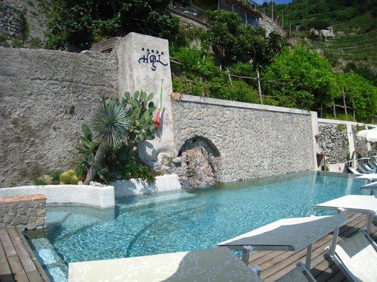 Hotel Botanico San Lazzaro: бассейн