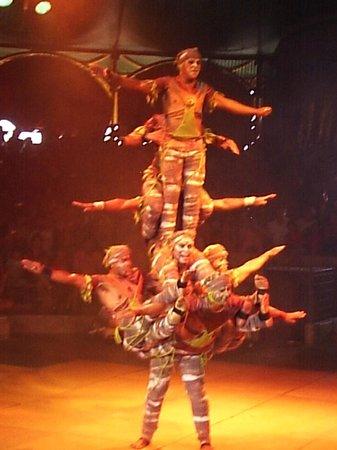 Beto Carrero World: Show no circo