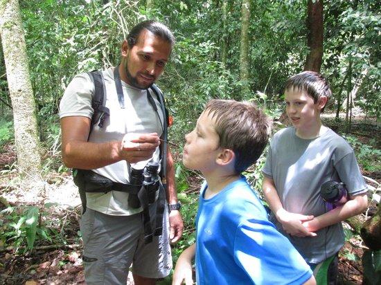 Drake Bay, كوستاريكا: Tasting termites.