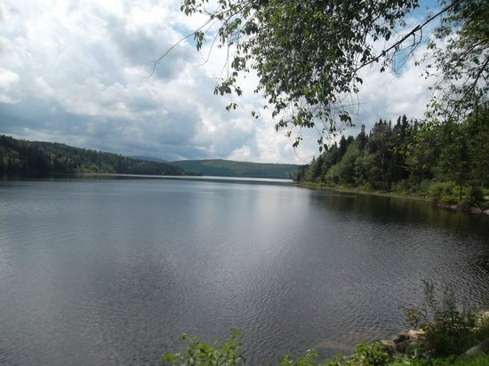 Lake Francis State Park: View from the picnic area