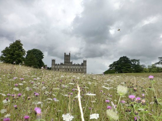 Highclere Castle: From the meadow