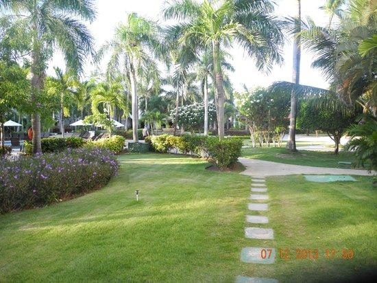 Dreams Palm Beach Punta Cana: grounds