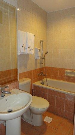 Fragrance Hotel - Emerald: Bathroom, need renovation