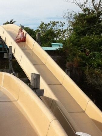 Water Wizz: The larger slides