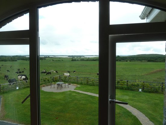 Bunratty Meadows Bed and Breakfast: View from room