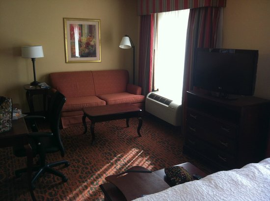 Hampton Inn & Suites Dothan: Sofa/reading area opposite bed area