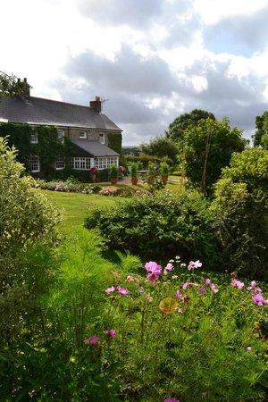 Bodrean Manor Farm: The house and gardens