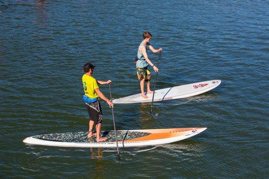 Big Winds: Paddle Boarding