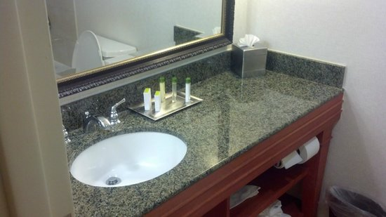 DoubleTree by Hilton Hotel Raleigh-Durham Airport at Research Triangle Park: BATHROOM