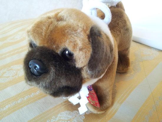 Tosa Dog Museum: お子さまへ、大人へも!こいつは喜ばれること間違いなし!