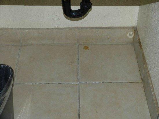 Town & Country Inn: bathroom
