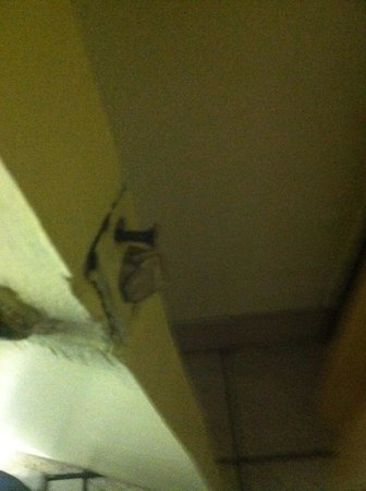 Travelodge Tampa/ West Of Busch Gardens: bathroom door is damage