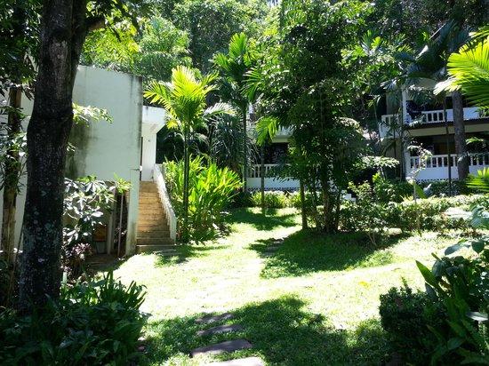 Fullmoon Beach Resort: garden