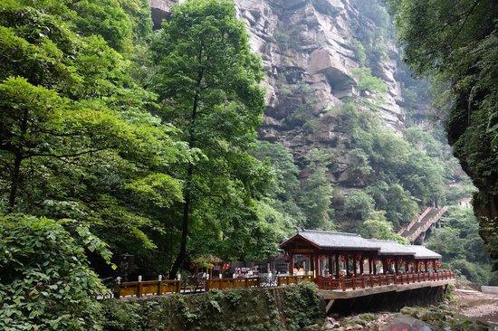 Ya'an Bifeng Canyon