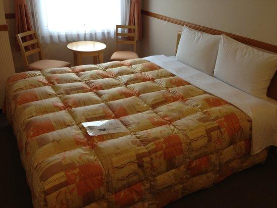 Toyoko Inn Shonan Chigasakieki Kitaguchi : 間取りもベッドもどこでも一緒の東横イン!