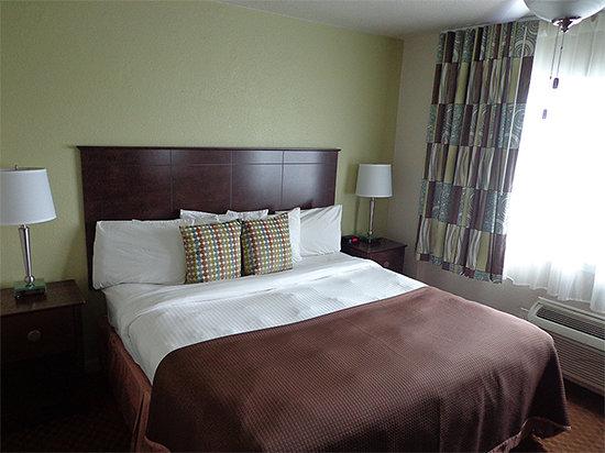 Palm Pavilion Inn: Hotel Room w/ King Bed