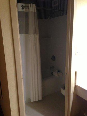 래디슨 밸리 포지 호텔 사진
