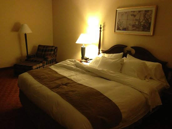 Radisson Hotel Valley Forge: Bed