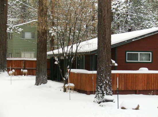 Spruce Grove Tahoe Cabins: Winter Wonderland