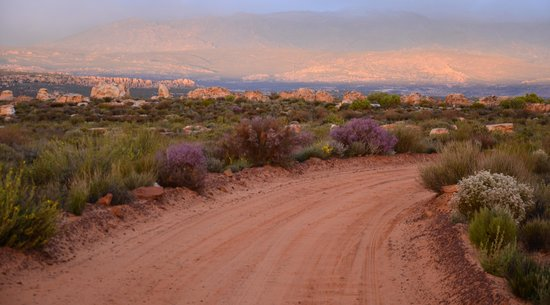 Kagga Kamma Nature Reserve: Out on early morning drive