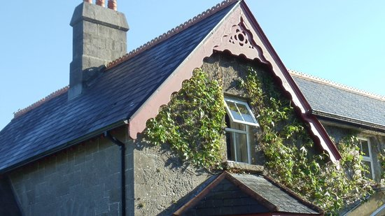 Ballykine House: Our room amidst the ivy, overlooked pastures with cows grazing.