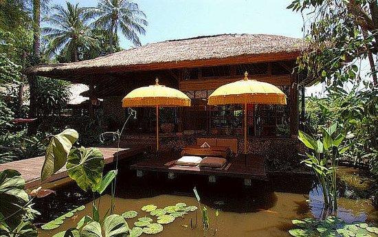 Watergarden Cafe: restaurant at lotus pond